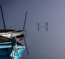 Meeting on the lake by Edgar Laureano