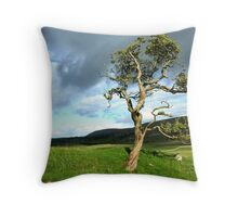 Single tree in a landscape Throw Pillow