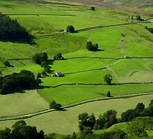Lofthouse Pastures by Kat Simmons