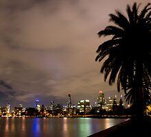 Albert Park Palms by arip