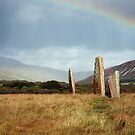 Standing Stones, Machrie Moor, Arra, by Sue Nichol