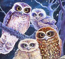 Boobook Owl Family by katemccredie