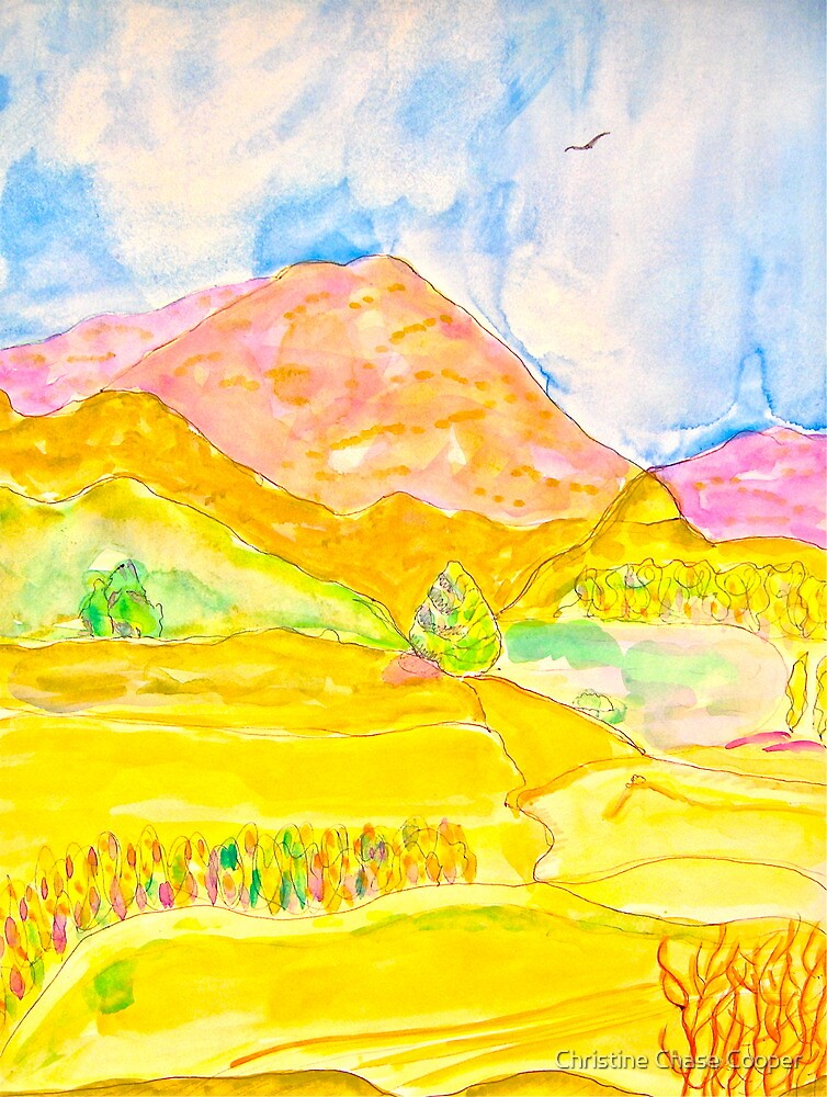 The Ledge in Silverado Canyon by Christine Chase Cooper