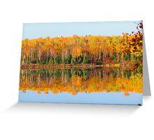 Fall , Island lake, Ontario Greeting Card