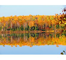 Fall , Island lake, Ontario Photographic Print