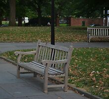 Park Bench'z by jayteez