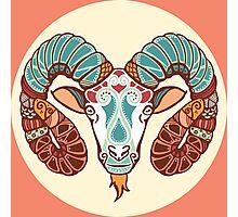 The Ram of Aries Photographic Print