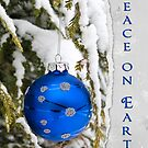 Blue Christmas by Maria Dryfhout