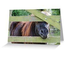 Shetland Gate Greeting Card