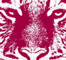 Close-up portrait of the big tiger Sticker