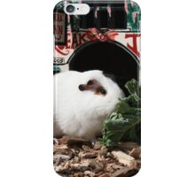 Outside squeak inn iPhone Case/Skin