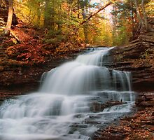 October At Onondaga Falls by Gene Walls