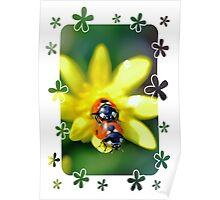 Ladybirds in a Spring Garden Poster