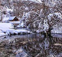 Glimpse Of Winter by Gene Praag