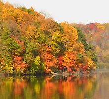 Frog Hollow Lake by lorilee