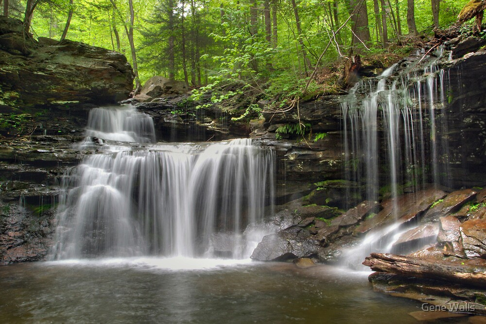 Unabstructed Spring View of R. B. Ricketts Falls (...from under the fallen tree) by Gene Walls