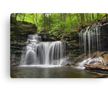 Unabstructed Spring View of R. B. Ricketts Falls (...from under the fallen tree) Canvas Print
