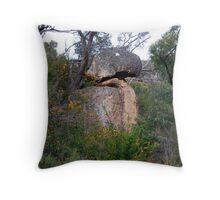 Parrot Rock Throw Pillow