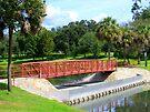 Footbridge In Tuscawilla Park by AuntDot
