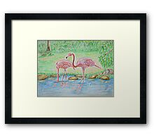Two Flamingos Framed Print