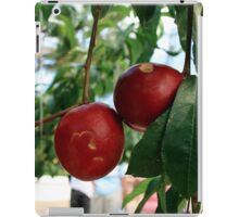 Don't eat the apples at Eden iPad Case/Skin