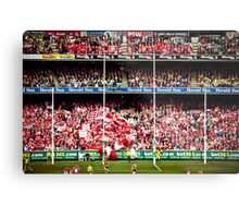 Sydney Swans Win the Grand Final! Metal Print