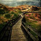 Moonlit Mile by RC deWinter