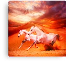 Unbridled Spirit Canvas Print