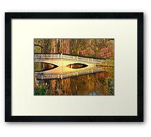 Bridge At Magnolia Plantation Framed Print