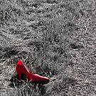 One Left Shoe by LadyEloise
