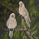 Long billed corella by Audrey  Russill