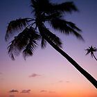 Sunset over the Flores Sea by Erik Schlogl
