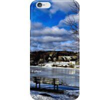 Winter Beauty iPhone Case/Skin