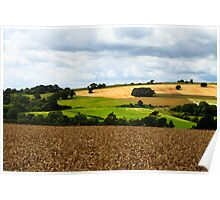 English Countryside - West Sussex, England Poster