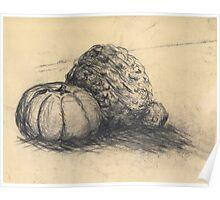 Black & Cream Gourd Pumpkins  Poster