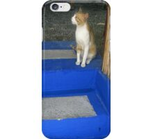 Hungry Cat - Crete iPhone Case/Skin
