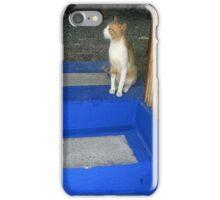 Hungry Cat - Crete iPhone Case/Skin