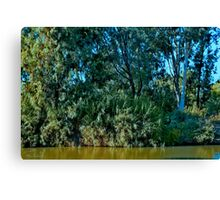 Listening to the whispering Watercourse Canvas Print