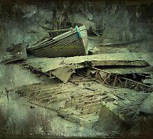 River Graveyard by BillyFish