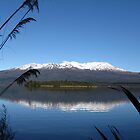 Lake Rotoaira by Jason Read-Jones