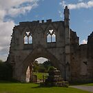 Kirkham Priory by Peter Reid