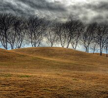 Parched Landscape by John  Kapusta