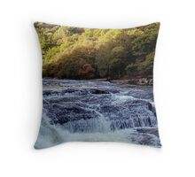 Dartmoor River Dart Vally Rowbrook Autunm Throw Pillow