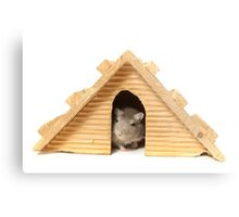 Successful mouse living in a wooden house Metal Print