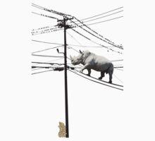 Rhino Wire by leotcreative