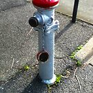 Fire Hydrant (.Melbourne.) by Russell Voigt