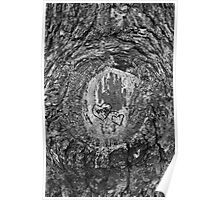 Heart Trees Poster