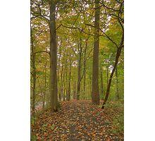 Mill Run Park, Manlius, NY USA Image 1 Photographic Print