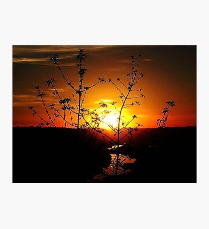 Sensational Sunset Photographic Print