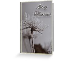 Greeting Card: Frosting Greeting Card